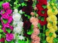 Hollyhock Chater\'s Double