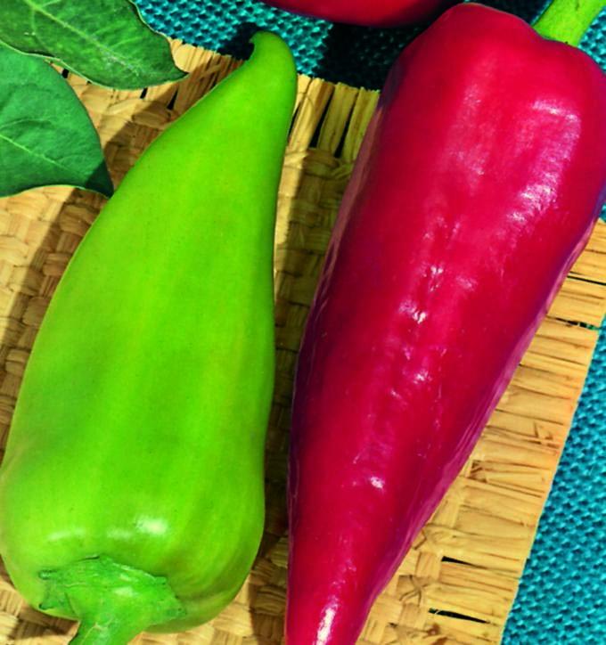 Pepper Cubanelle
