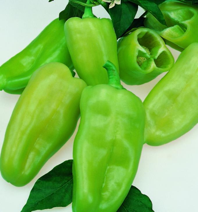 Pepper Pepperoncini