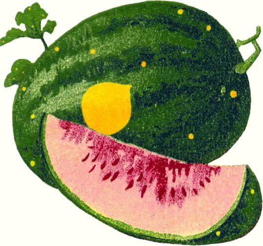 Watermelon Moon and Stars