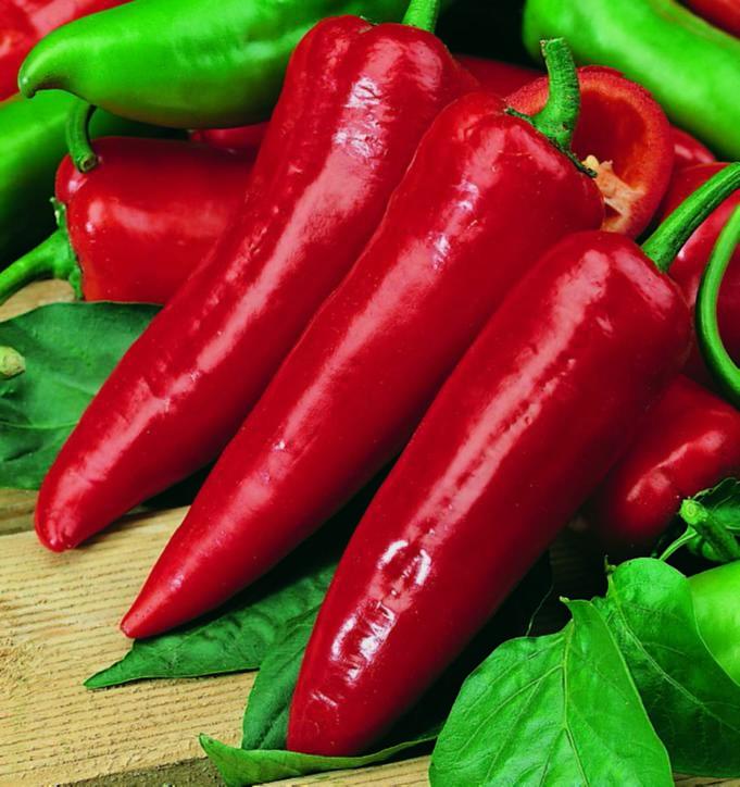 Pepper Cayenne